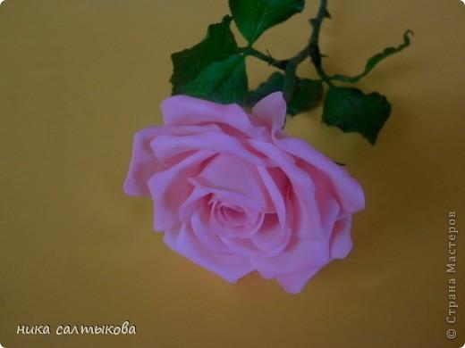 Эту розу слепила для одной студии, с которой я активно сотрудничаю. Судить вам, конечно! фото 3