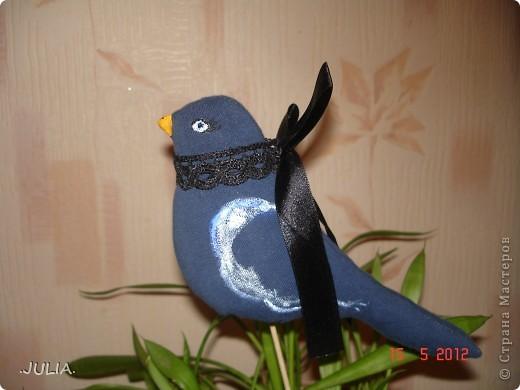 Дорогие жители СМ я хочу показать вам этих чудесных птичек,которые теперь живут у меня дома.Я советую поселить таких и у вас дома,они будут радовать вас каждый день.Сделать таких совсем не сложно. фото 4