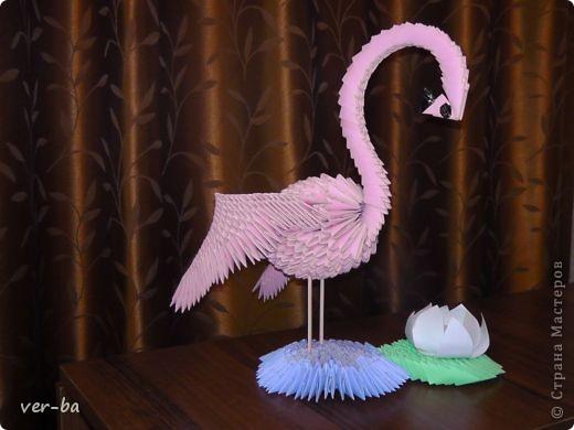 розовый фламинго-14.