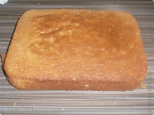 Очень вкусный бисквитный тортик! И, что не мало важно, очень прост в приготовлении. Названия я не знаю, поэтому если у кого то есть идеи, буду благодарна! фото 14