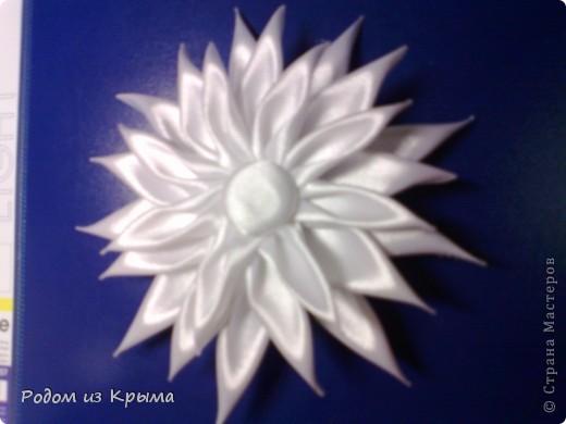 Понравилась моя бордовая хризантемка-брошка Катиной подружке, заказала точно такую-же, только белую. Но все равно хризантемы отличаются между собой (из-за разной сборки, пытаюсь найти для себя наиболее приемлемый результат) фото 3