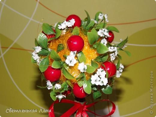"""Здравствуйте, жители СМ и гости моей странички. Сегодня я вырастила свой ягодный топиарий. Эти ягоды неизвестной породы, поэтому назвала деревцо просто """"Красные ягоды"""". фото 3"""