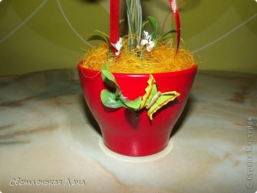 """Здравствуйте, жители СМ и гости моей странички. Сегодня я вырастила свой ягодный топиарий. Эти ягоды неизвестной породы, поэтому назвала деревцо просто """"Красные ягоды"""". фото 2"""