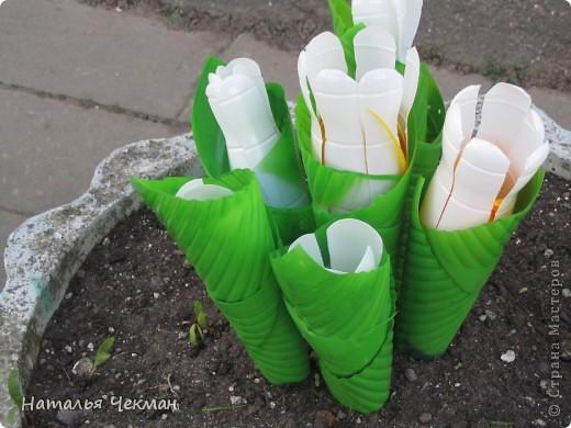 Несколько моих творений из пластиковых бутылок. Это далеко не все, но, к сожалению, я раньше не фотографировала. фото 2