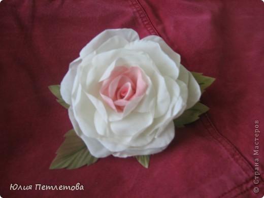 Дорогие Мастерицы, представляю мою новую розу)))