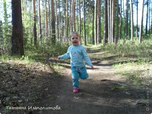 С удовольствием совершили прогулку по нашему весеннему лесу.  фото 6