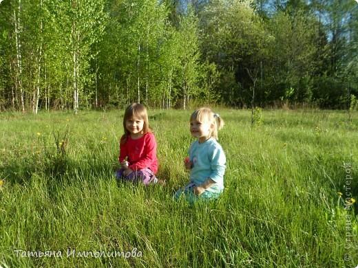 С удовольствием совершили прогулку по нашему весеннему лесу.  фото 13