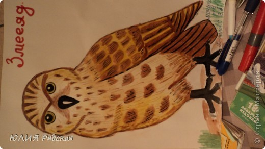 """Вот такой Змееяд у меня получился для реферата сына по ООМ на тему : """"Красная книга Ставропольского края"""".  Мы выбрали птичку-Змееяда рисовать пришлось с компа рисунок в инете маленький.  Но я осталась довольна результатом и решила поделиться с вами. фото 1"""