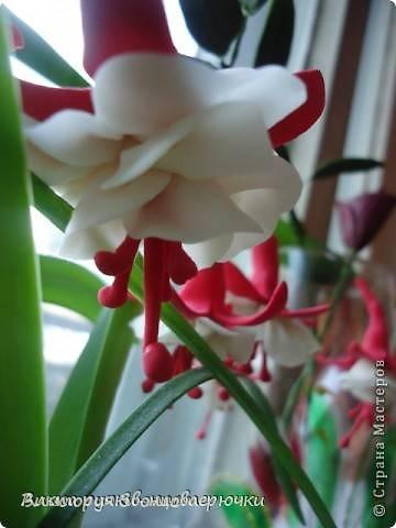 """Всем доброго времени суток! Вот мой маленький М К по цветку фуксии! Для работы я использую """"самоварный""""фарфор. В нашем случае розового(красила я его пищевым красителем,для пасхальных яиц) и белого цвета,зубочистки и клей. фото 1"""