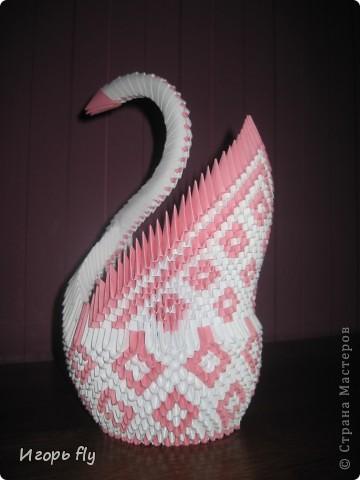 Белый лебедь фото 4