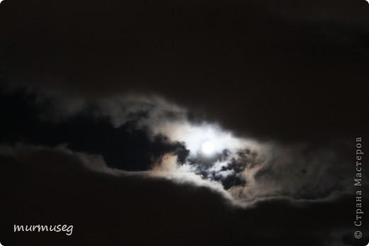 луна.ночь первая. фото 3