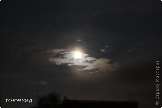 луна.ночь первая. фото 4