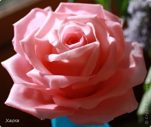 """В прошлом году делала я заколку с розой. Так она у девушки стала разваливаться... Ну и чтобы не """"ударить в грязь лицом"""" - я её переделала. фото 2"""