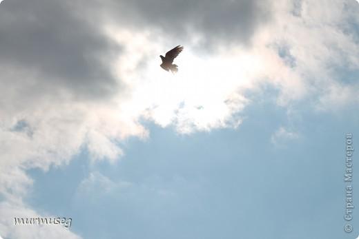 в небе... фото 1