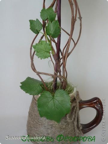 Всем привет!!!!!!!!!!! Наконец, у меня выросло виноградное дерево в компанию к деревьям Кокетки, Рыжехвостой, Еленче, Светленькой Ланы....!!!!!! Но у каждой из нас свой, особенный вариант. фото 4