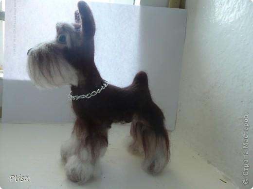 Мой любимый пёс - граф)) Он самый большой из тех игрушек которые я сваляла - 16 см. в высоту . фото 3