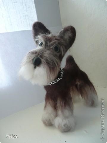 Мой любимый пёс - граф)) Он самый большой из тех игрушек которые я сваляла - 16 см. в высоту . фото 1