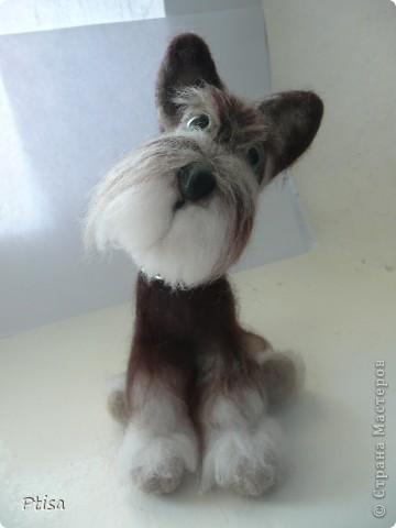 Мой любимый пёс - граф)) Он самый большой из тех игрушек которые я сваляла - 16 см. в высоту . фото 2