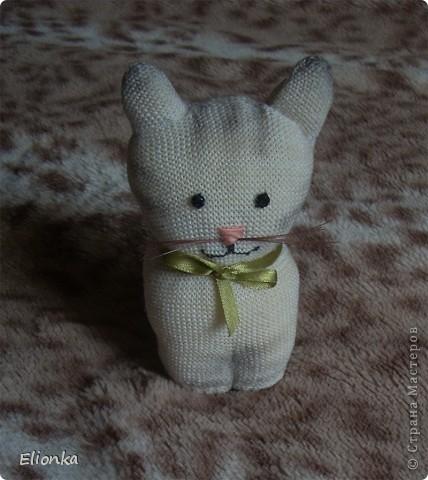 """Наконец нашла (благодаря подруге) """"техническую"""" перчатку без всяких там нашлепок из резины и прочей лабуды (безусловно полезной при работе в саду, но мне абсолютно не нужной). И родилась из этой перчатки маленькая кошка Мяушка. А в компанию ей сшился """"носочный"""" зайка- попрыгайка. Доча говорит, что заяц хулиганистый и ловелас, а по-моему просто ошалевший от теплых денёчков. Лето, ах, лето.... фото 3"""