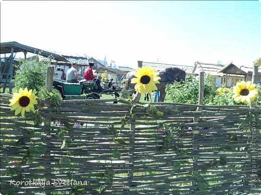"""19 мая было открытие этнографического музея """"Атамань"""" который находится в Краснодарском крае на Таманском полуострове. Я со старшими сыновьями приехали на этот праздник. Впечатлений - море, хотя и моря там хватало.  фото 5"""