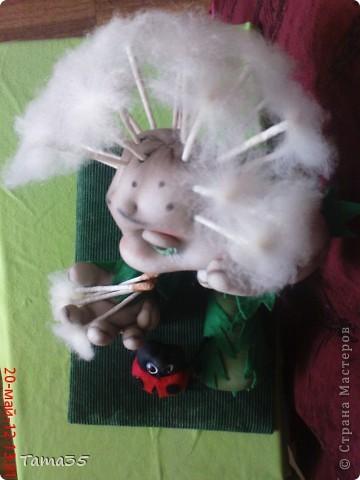 dsc03664 Коса-колосок: мастер-класс по плетению
