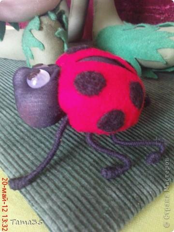 dsc03666_0 Коса-колосок: мастер-класс по плетению