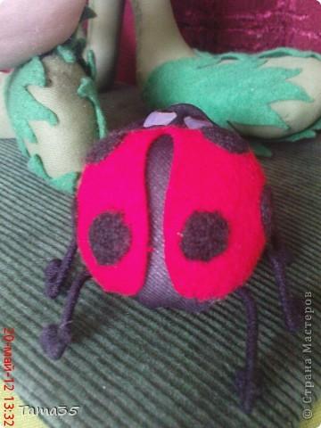 dsc03667_0 Коса-колосок: мастер-класс по плетению