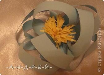 Сначала цветочки. фото 2