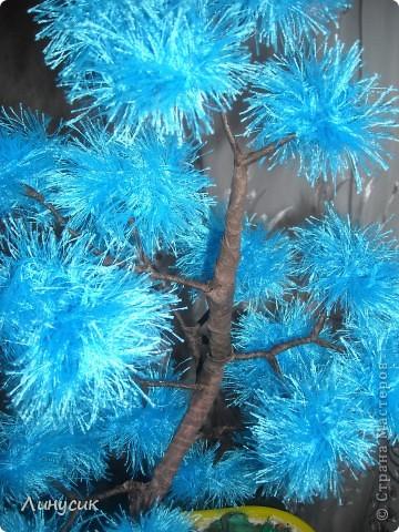 Голубой бонсайчик фото 3