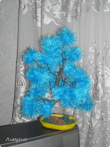 Голубой бонсайчик фото 1