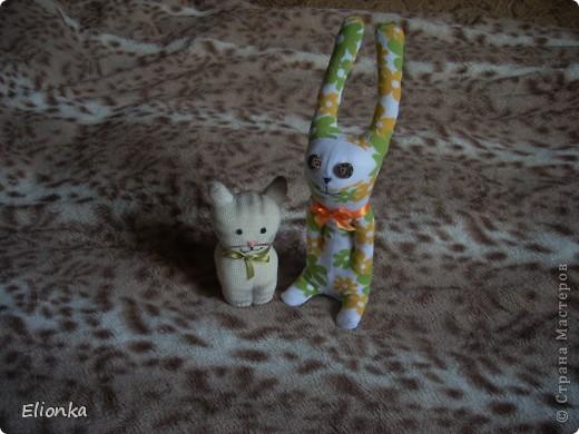 """Наконец нашла (благодаря подруге) """"техническую"""" перчатку без всяких там нашлепок из резины и прочей лабуды (безусловно полезной при работе в саду, но мне абсолютно не нужной). И родилась из этой перчатки маленькая кошка Мяушка. А в компанию ей сшился """"носочный"""" зайка- попрыгайка. Доча говорит, что заяц хулиганистый и ловелас, а по-моему просто ошалевший от теплых денёчков. Лето, ах, лето.... фото 1"""