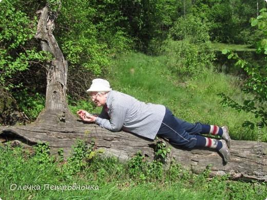 После трудов праведных, решила отдохнуть и полюбоваться природой наяву. Многое меня удивило!!! Земляничная полянка. фото 16