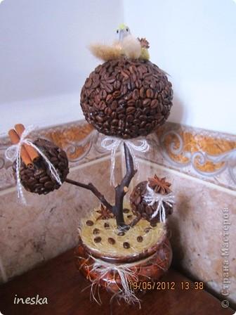 Давно хотелось сделать кофейное дерево,но что то все времени не хватало,но вот наконец я его сделала,вот такое  ветвистое,с птичкой в гнездышке