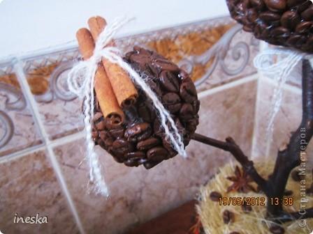 Давно хотелось сделать кофейное дерево,но что то все времени не хватало,но вот наконец я его сделала,вот такое  ветвистое,с птичкой в гнездышке фото 2