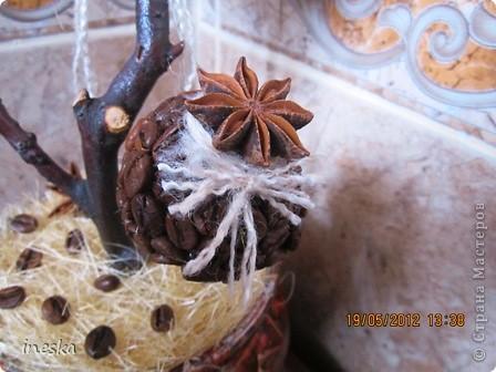 Давно хотелось сделать кофейное дерево,но что то все времени не хватало,но вот наконец я его сделала,вот такое  ветвистое,с птичкой в гнездышке фото 3
