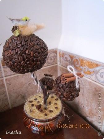 Давно хотелось сделать кофейное дерево,но что то все времени не хватало,но вот наконец я его сделала,вот такое  ветвистое,с птичкой в гнездышке фото 6