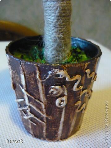 Мне так понравилось делать ароматные кофейные деревца, что я смастерила ещё одно! Как говорят, меня понесло, и в этом деревце, я наверно, перемудрила с укладкой зёрен. Но мне всё равно оно нравится. фото 7