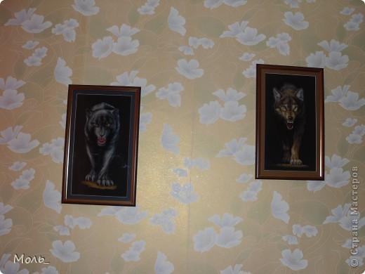 Волчица и пантера фото 1
