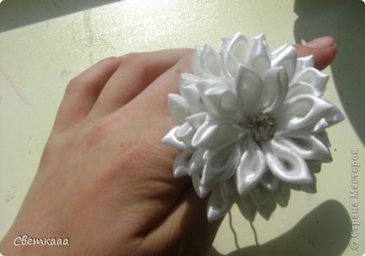 При солнечном освещении)) фото 1