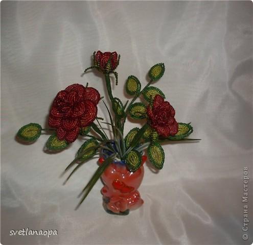 Продолжаю подборку моих роз. фото 6