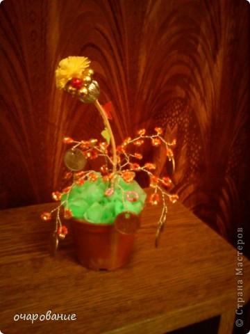 маленькое деревце - проба фото 2