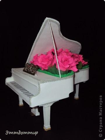 Моя рояль фото 2
