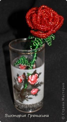 Увидела в блоге у Бригантины http://stranamasterov.ru/node/358781 , и решила - хочу! Мк - http://blog.kp.ru/users/bengovil/post179311426/?upd Моя первая настоящая роза! фото 1