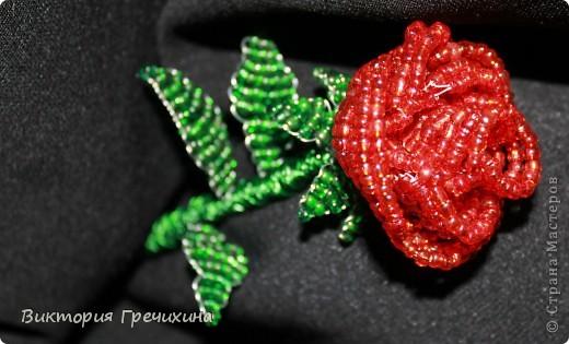 Увидела в блоге у Бригантины http://stranamasterov.ru/node/358781 , и решила - хочу! Мк - http://blog.kp.ru/users/bengovil/post179311426/?upd Моя первая настоящая роза! фото 2