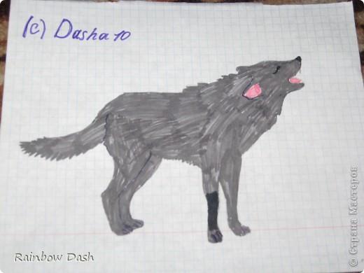 Этот рисунок был создан когда свет отключили на 30 минут. За это время нарисовала эту волчицу.