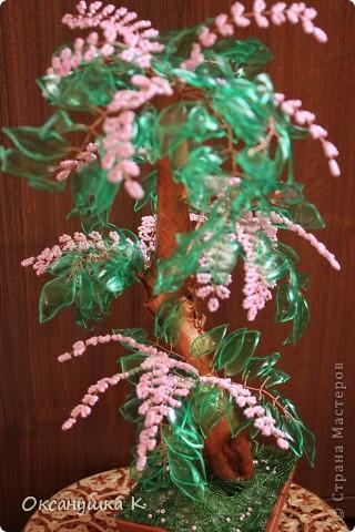 """Здравствуйте, все жители и гости Страны Мастеров! Это деревце  -  """"скороспелка"""", высотой 38см, собранное из того, что под рукой было. Внезапно нашло на меня вдохновение и все, что готовилось для других деревьев, соединилось в одном. Листики из пластиковых бутылок, розовые веточки готовились для сакуры, коряжка (ствол дерева) просто ждала своего часа))) фото 3"""