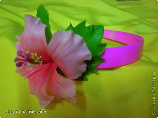Легенда гласит, что на месте Чэнду тысячу лет назад находилось княжество Поздняя Шу. Правил им князь Мэн Чан, который очень любил цветы и для любимой принцессы, разделявшей его увлечения — он даже назвал ее «Женщина Бутон» — он посадил кустики гибискуса в каждом уголке своих владений. На островах Фиджи существует праздник — День Огненного Гибискуса. Жители украшают свои дома яркими гирляндами и лентами, организуют праздничную процессию из красивых девушек. Гвоздь программы — это выбор королевы цветов. В Индии гибискусы вплетают в свадебные венки.  А на Гавайских островах гибискус называют «цветком прекрасных женщин», потому что местные красавицы носят его в своих черных волосах. фото 1
