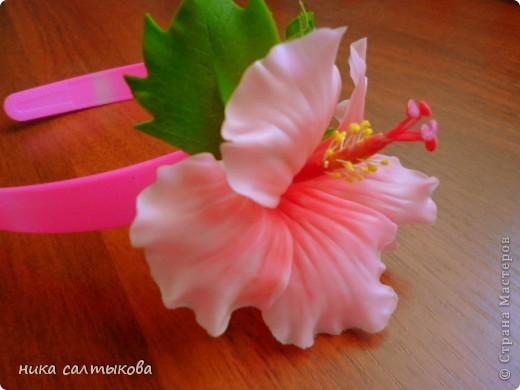 Легенда гласит, что на месте Чэнду тысячу лет назад находилось княжество Поздняя Шу. Правил им князь Мэн Чан, который очень любил цветы и для любимой принцессы, разделявшей его увлечения — он даже назвал ее «Женщина Бутон» — он посадил кустики гибискуса в каждом уголке своих владений. На островах Фиджи существует праздник — День Огненного Гибискуса. Жители украшают свои дома яркими гирляндами и лентами, организуют праздничную процессию из красивых девушек. Гвоздь программы — это выбор королевы цветов. В Индии гибискусы вплетают в свадебные венки.  А на Гавайских островах гибискус называют «цветком прекрасных женщин», потому что местные красавицы носят его в своих черных волосах. фото 3