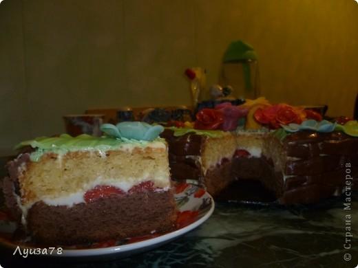 Здравствуйте дорогие жители Страны мастеров! Давно хотела сделать торт в виде корзины с цветами, да случая удобного не было, А потом я решила зачем ждать , можно испечь и просто так. Так получился этот торт. фото 4