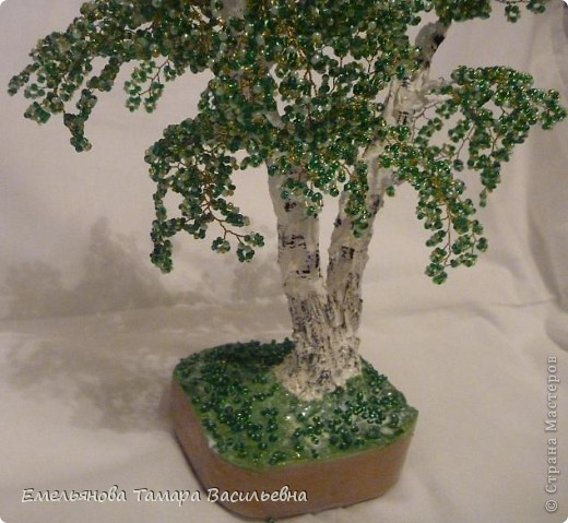 Это дерево я сделала на День рождение своей сестренке. До этого все мои сделанные деревья были одноствольные. Мне давно хотелось сделать двухствольную березку, и вот наконец моя мечта сбылась. фото 4